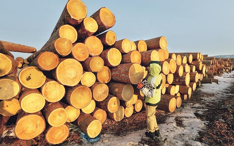 Биржа по торговле лесом виды майнинга криптовалют