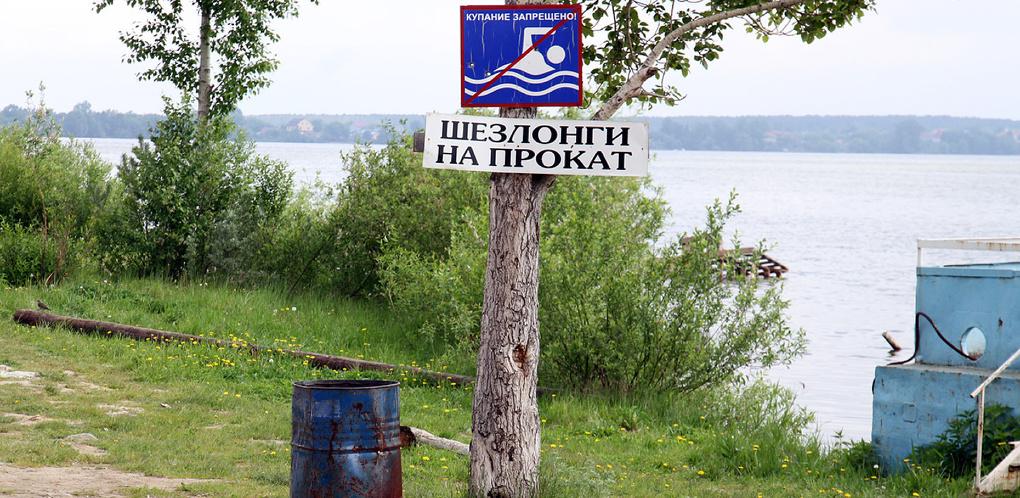 Екатеринбуржцы предлагают создать Комитет по защите Шарташского лесопарка