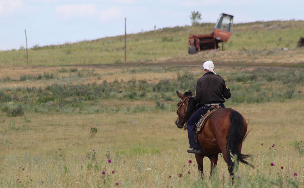 Копать не сеять. Семь юридических проблем сельского хозяйства Башкирии