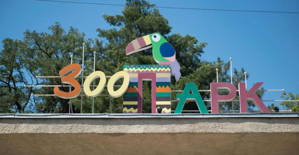 Из жизни животных: как работает Ростовский зоопарк