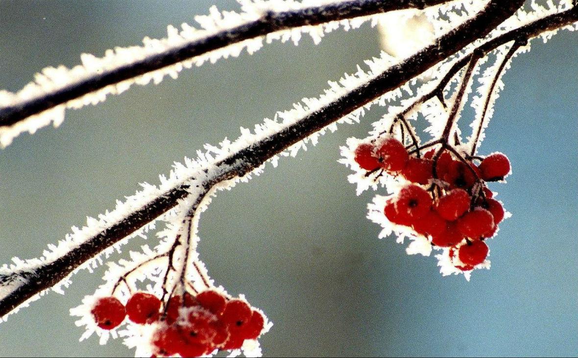 Синоптики рассказали, какой будет зима в Башкирии