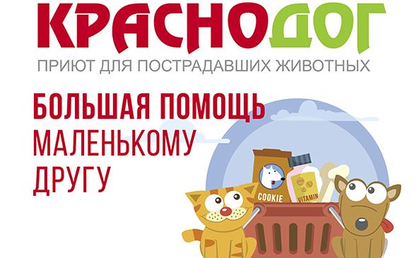 «Магнит» и приют для животных «Краснодог» запустили совместную акцию