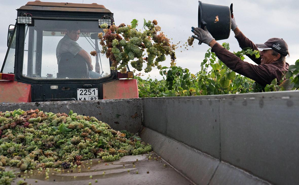 Импортерам вина предложили платить 1 руб. за ввоз каждой бутылки в Россию