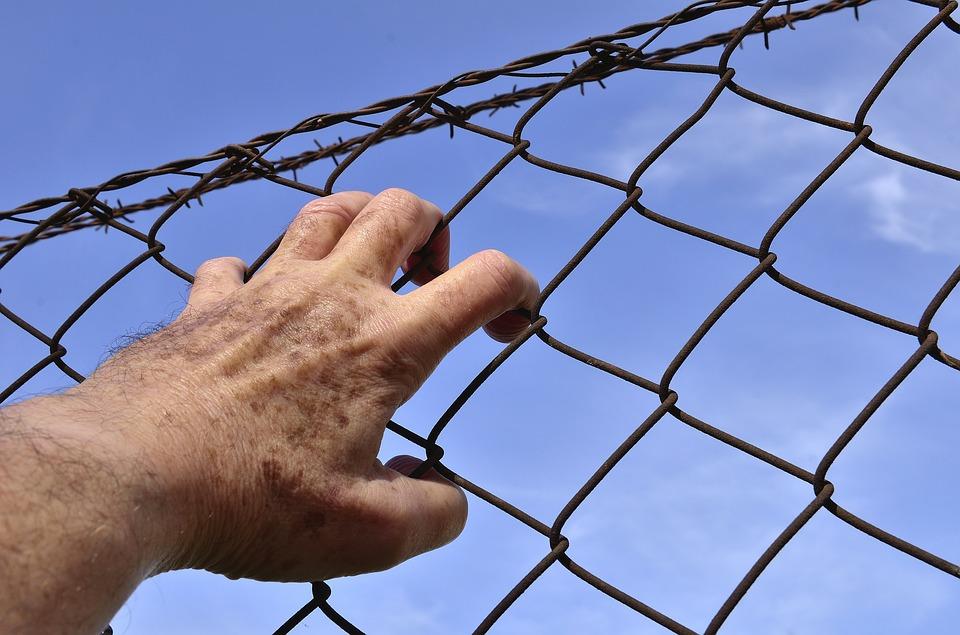 Заключенный подал иск к новосибирскому СИЗО за моральные страдания