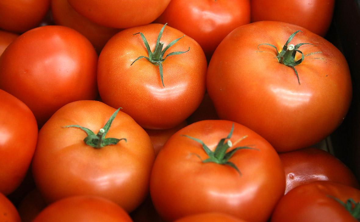 Россия запретила ввоз африканских помидоров из Белоруссии
