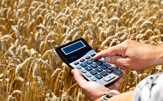 «Агрокомплекс» им.Ткачева стал крупнейшим на Кубани получателем субсидий