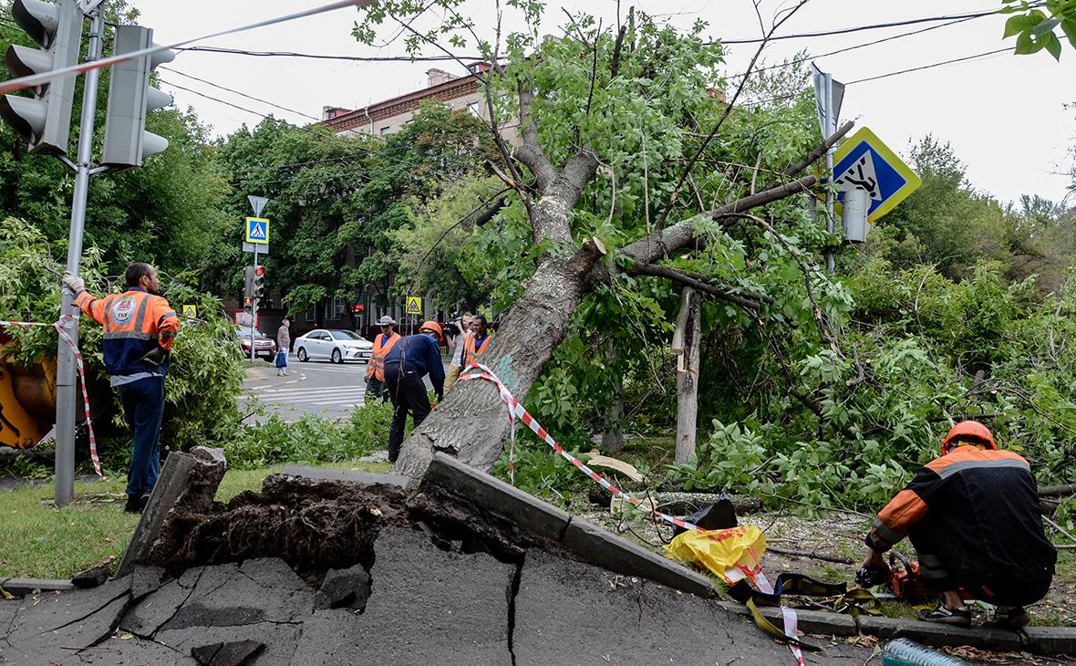 Ущерб от погодных аномалий в Москве к 2025 году оценили в 200 млрд руб.