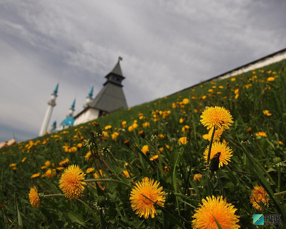 Гидрометцентр пообещал в Татарстане жаркую погоду на выходных