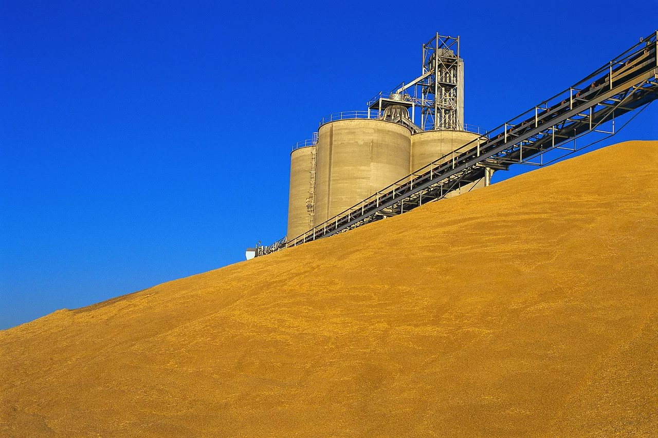«Агросила» вложила 2,2 млрд рублей в модернизацию семенного завода