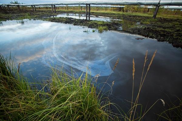 Экологии Югры нанесен ущерб на полмиллиарда рублей
