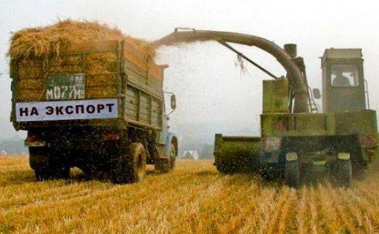 Турецкие квоты не отразятся на объемах экспорта зерна из ЮФО