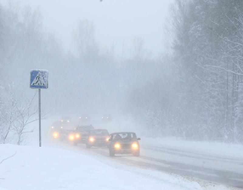 Россия уточнила правила автобусного сообщения с Финляндией