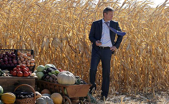 «Агрокомлекс» занял третье место в России по площади земель в обработке