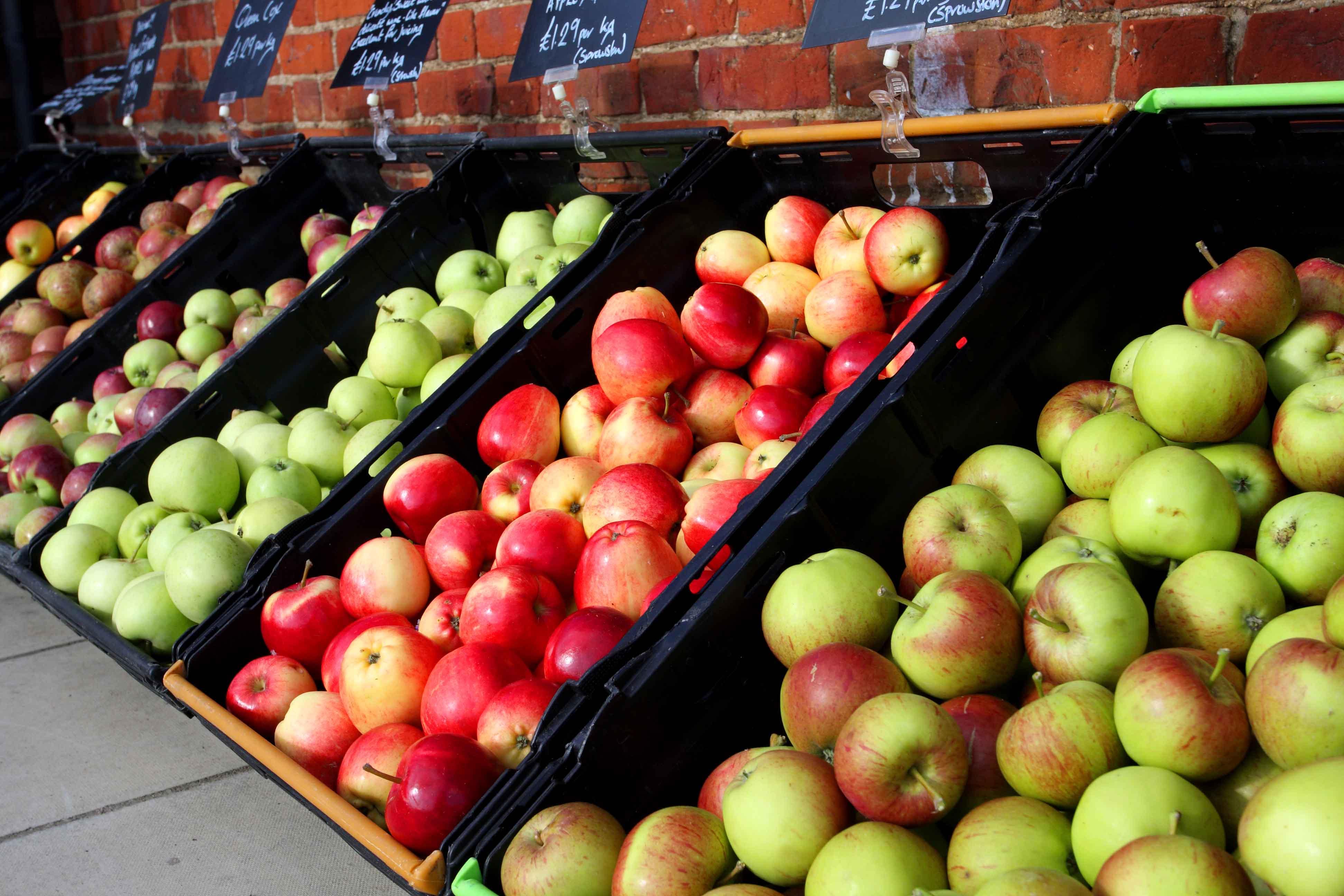 Запрещенные белорусские яблоки в Казани заменят на сербские и иранские