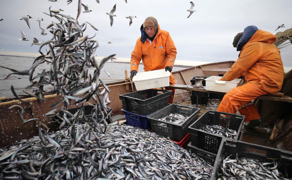 новый закон о любительской рыбной ловле