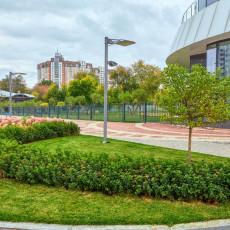 Озеленение территории около Башни Исеть, выполненное ТЛР Green Park