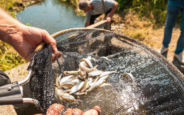 Сохранение биологического разнообразия— одно изосновных направлений экологической программы компании (все фото: «Сибантрацит»)