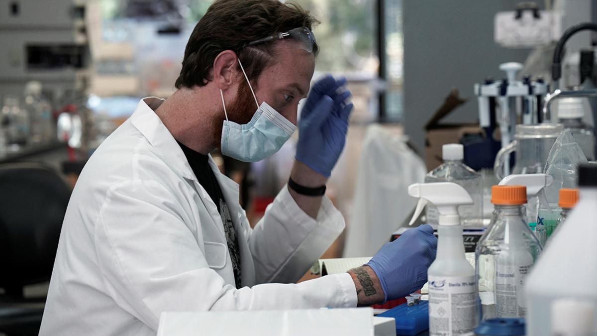 Ученые заявили об уничтожении коронавируса при помощи коктейля из антител  :: Общество :: РБК
