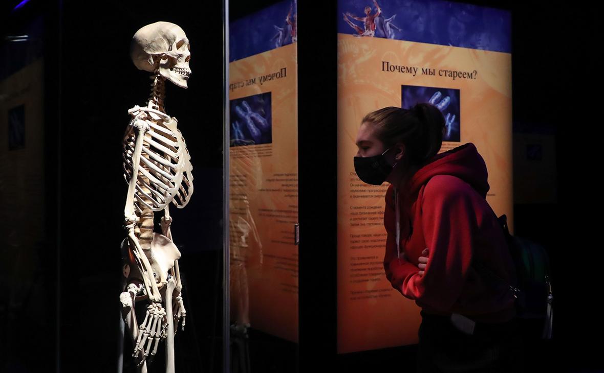 Бастрыкин поручил проверить организаторов выставки человеческих тел