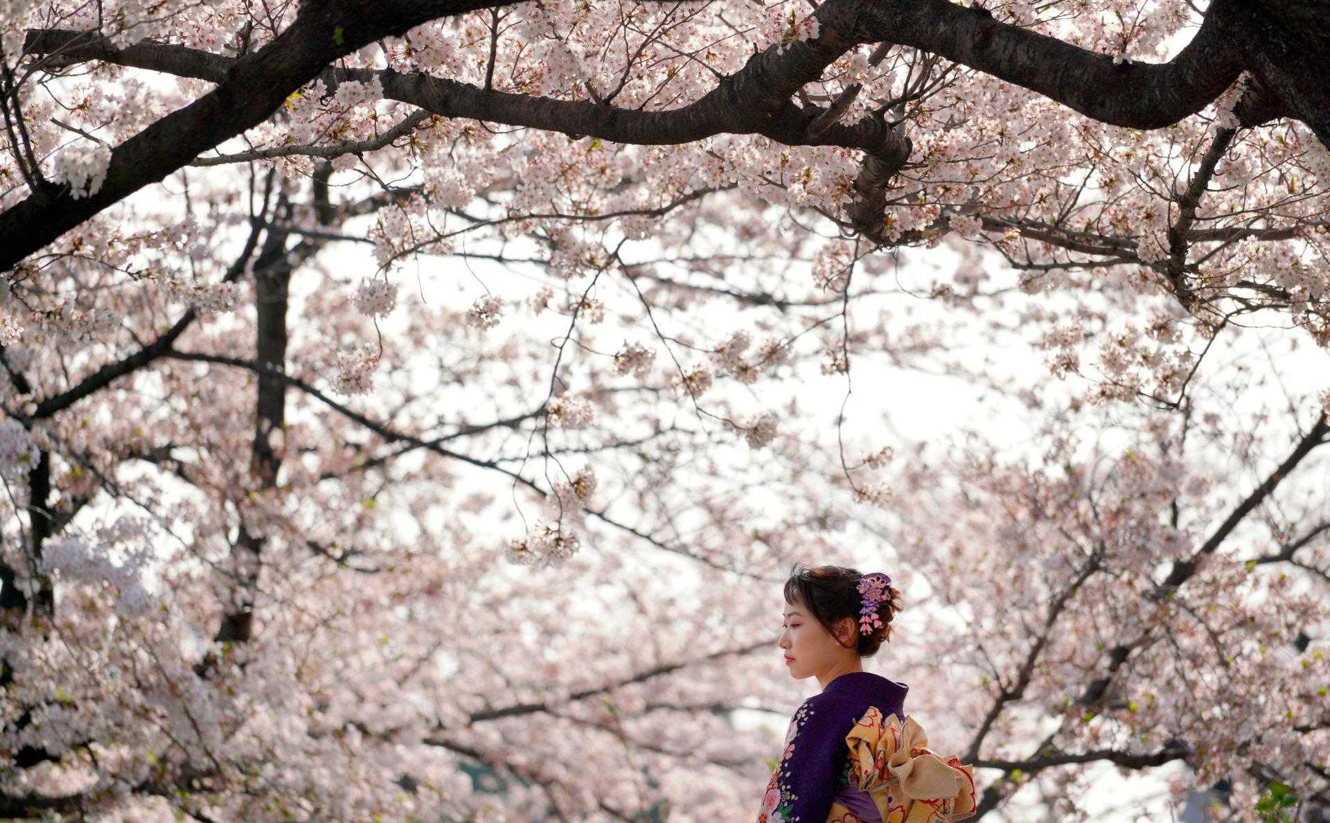 Фото:Eugene Hoshiko / AP