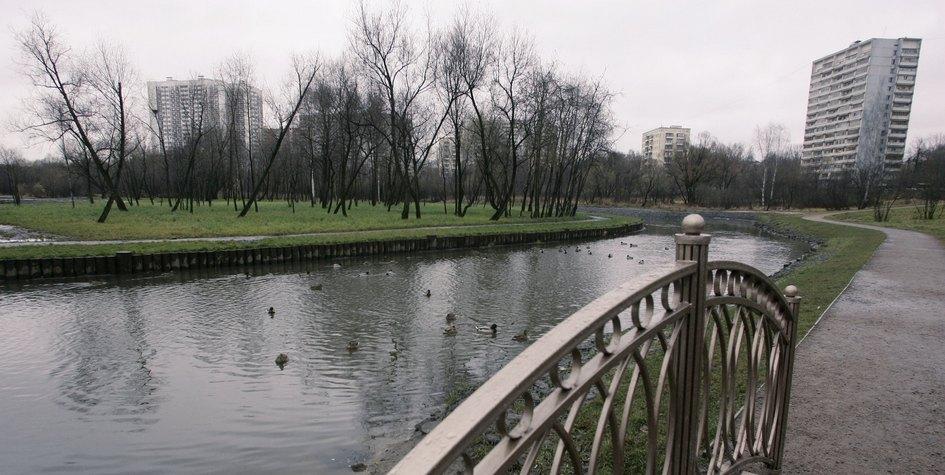Берег Яузы в Москве