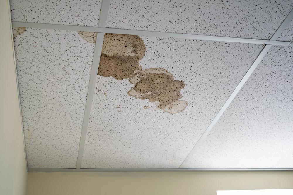 Подвесной потолок в квартире в 2020 году— моветон!