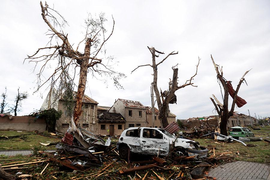 Фото:David W Cerny / Reuters