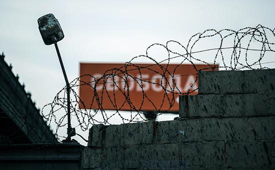 Фото:  Сорокин Донат/ТАСС