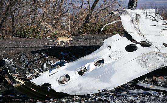 Обломки пассажирского самолета Malaysia Airlines. 6 ноября 2014 года