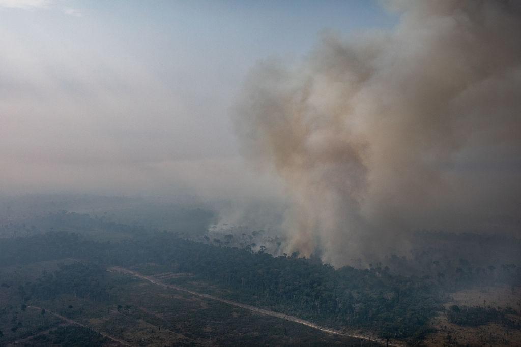 Горящие леса Амазонии