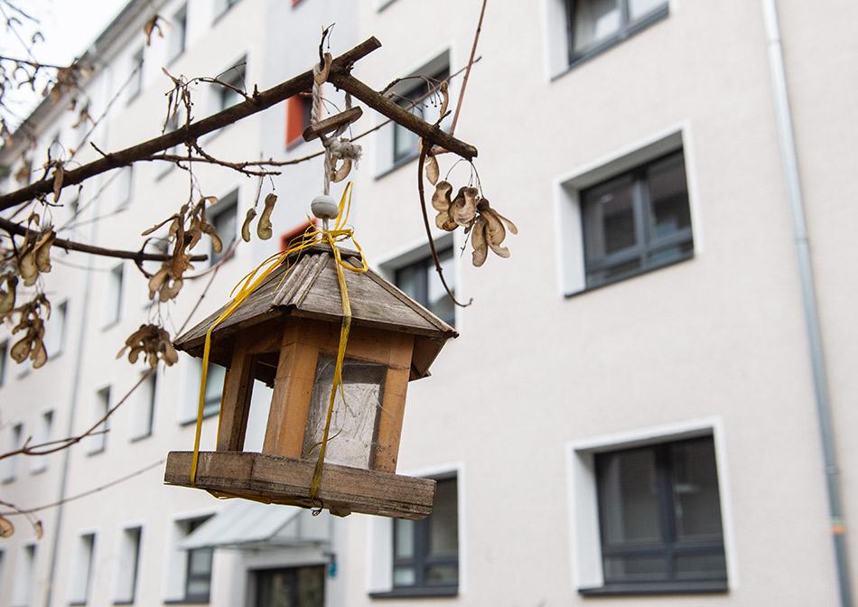Фото:Lucas Bäuml/dpa/Global Look