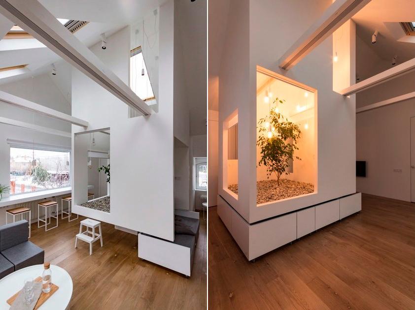 Большое количество окон гарантируют дереву хорошее освещение — одно из стекол расположено прямо над растением