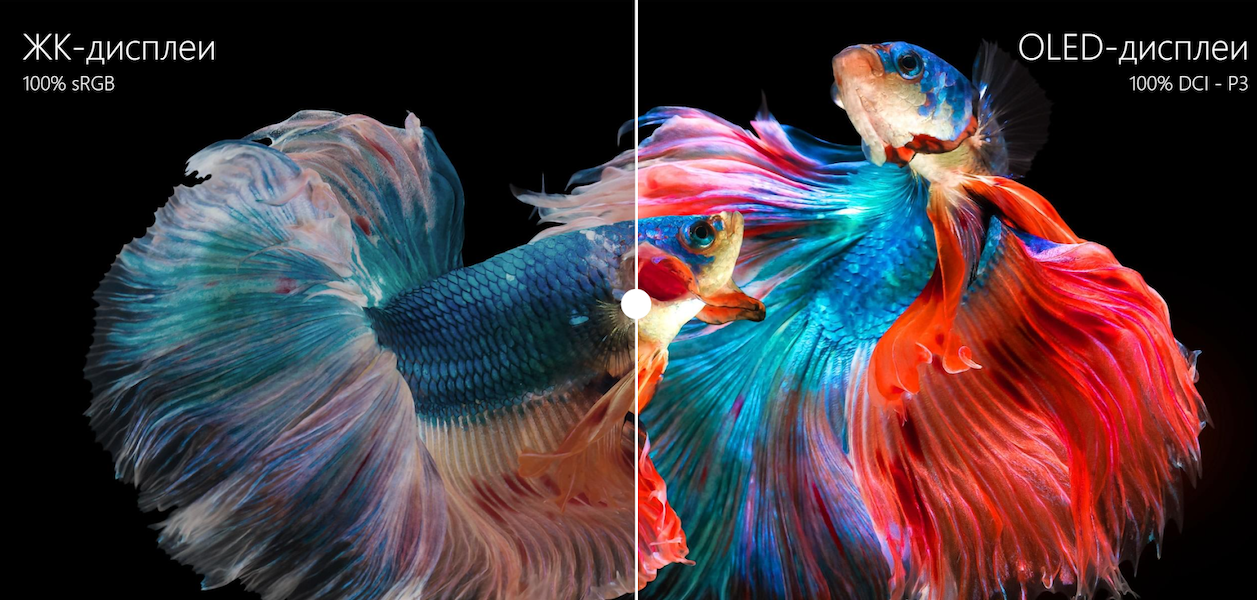 Разница качества изображения ЖК- и OLED-дисплеев