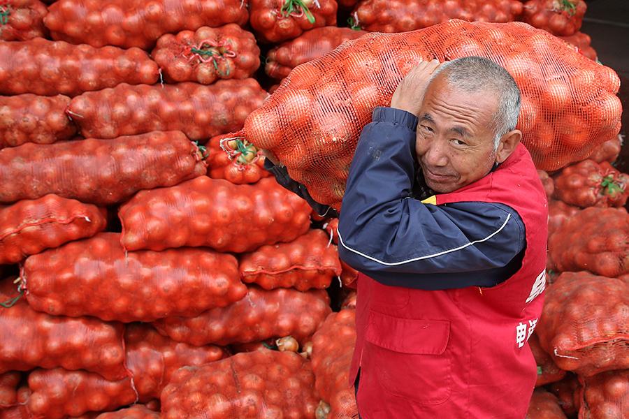 Мешки с луком в логистическом центре прямого экспорта фруктов и овощей из Китая в Россию «Баожун»