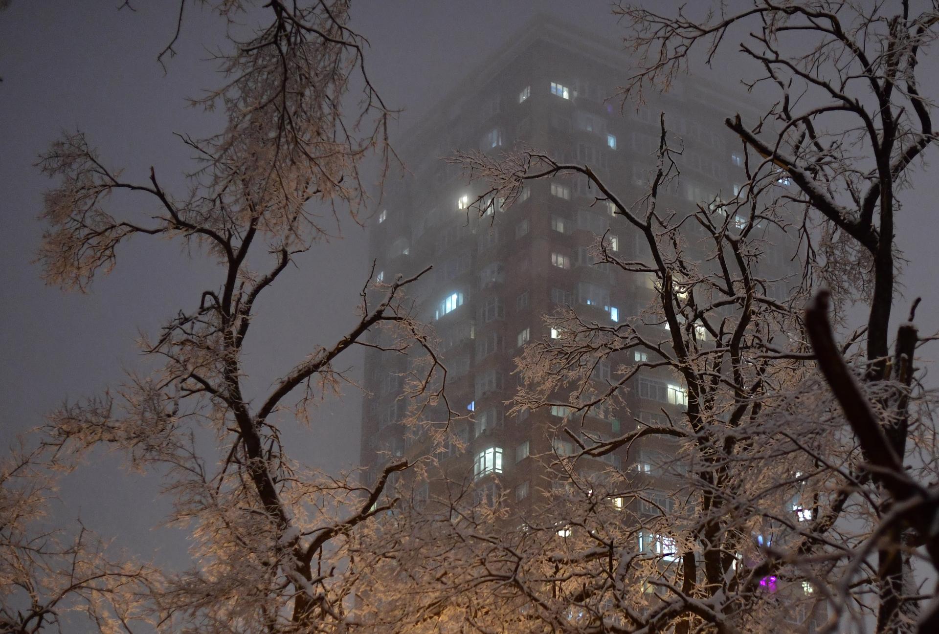Владивосток. Вид на многоэтажный дом через заснеженные деревья
