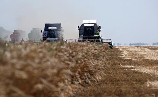 Уборка урожая напшеничном поле ЗАО «Агрокомплекс»