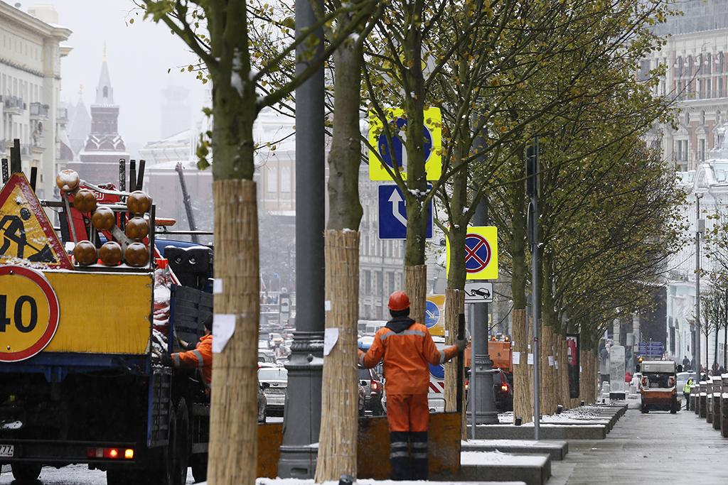 Помимолип, у здания Центрального телеграфа будет высажено одно знаковое дерево—дуб красный (Quercus rubra). А наплощади у здания «Известий» появится плодовыйсадиздекоративных яблонь