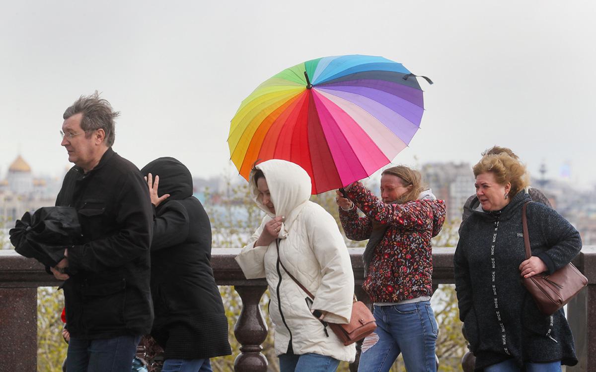 Синоптики предупредили москвичей о грозах и сильном ветре