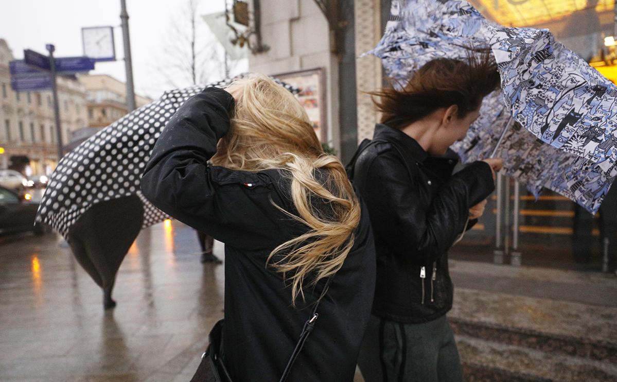 МЧС предупредило о ветре до 20 м/с в Москве в ближайшее время