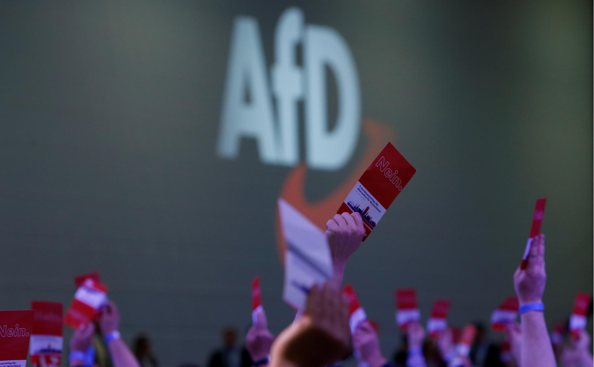 Голосование на съезде AfD в июне 2018 года