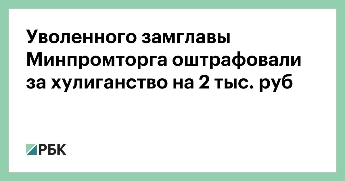 Уволенного замглавы Минпромторга оштрафовали за хулиганство на 2 тыс.