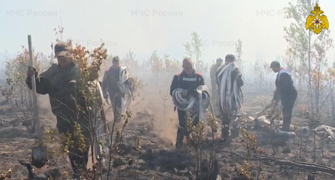 Крупный низовой пожар около Краснокамска ликвидирован