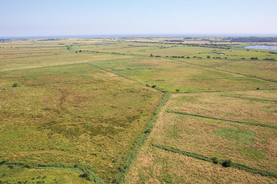 Пятый лот—это пастбища илеса общей площадью2,21га. Часть земель уже сданы варенду фермерской компании