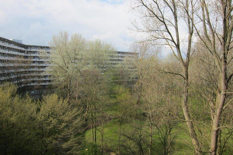 Автором первоначальной версии 11-этажного здания был голландский архитектор Питер Банненберг