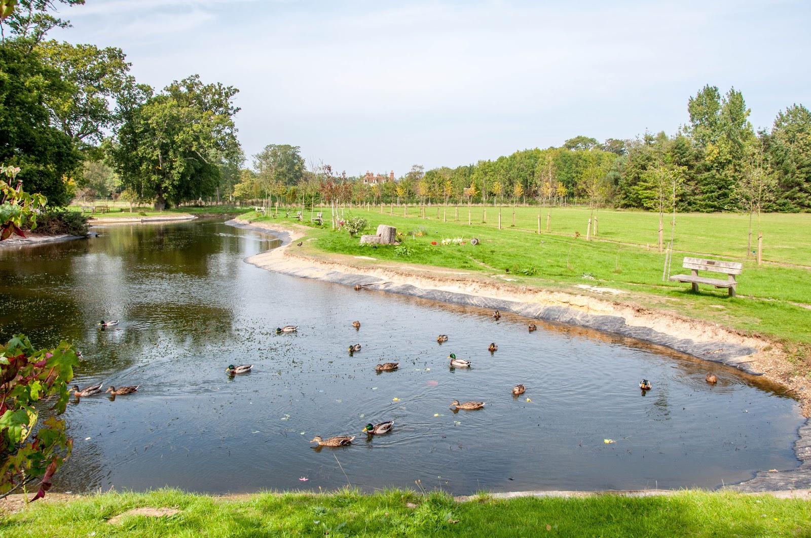 Мемориальный парк Hinton Park Woodland Burial Ground (Великобритания)