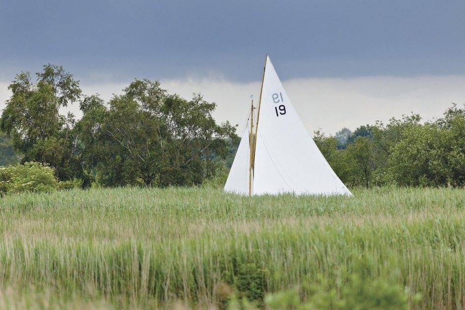 По Hickling Broad Estate протекает судоходная река Терн, гдезанимаются спортом местные яхтсмены