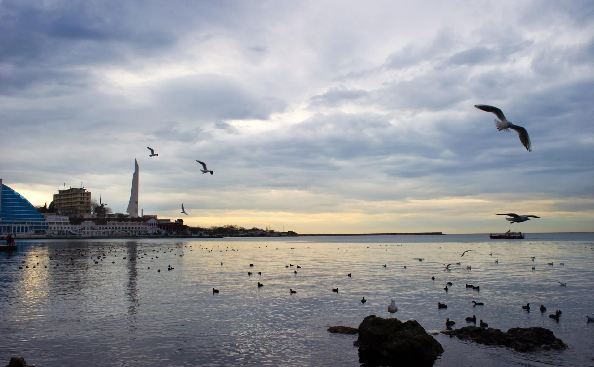 Бухта Севастополя