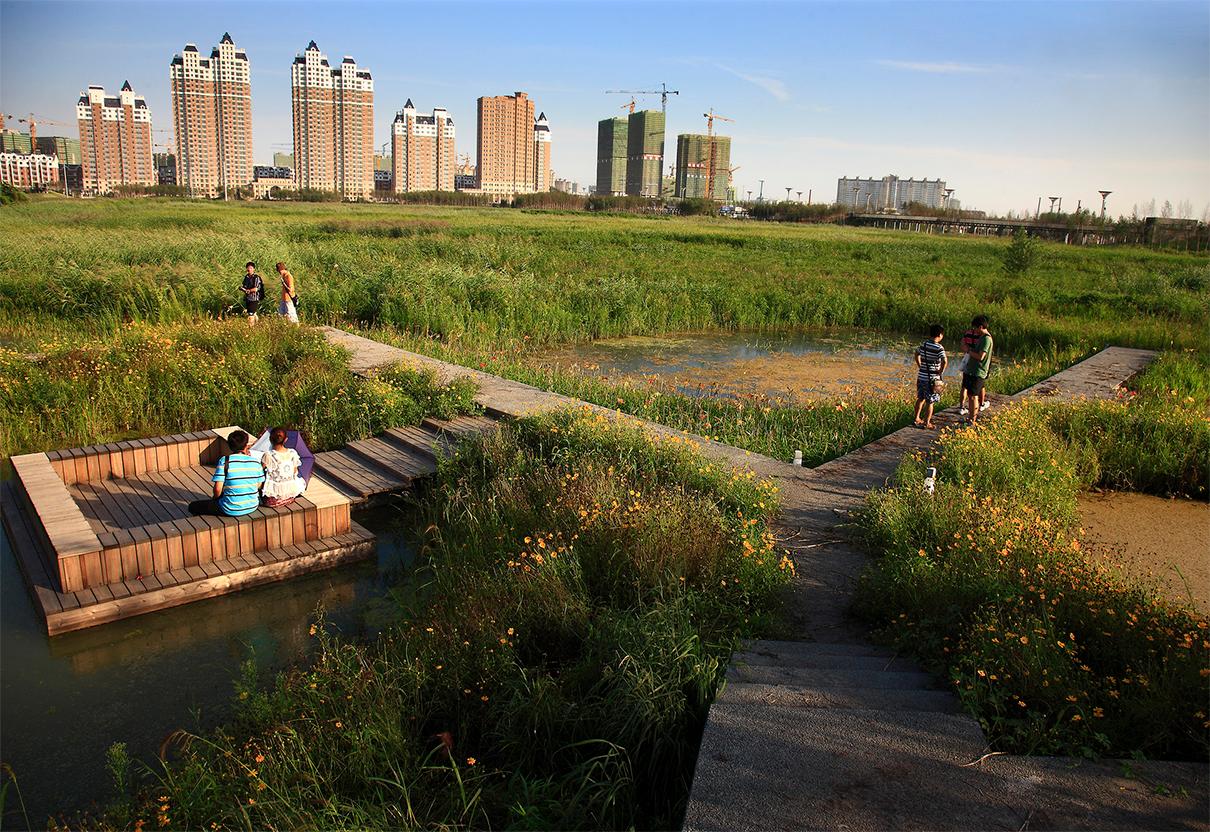 Один из возможных проектов благоустройства берегов Казанки