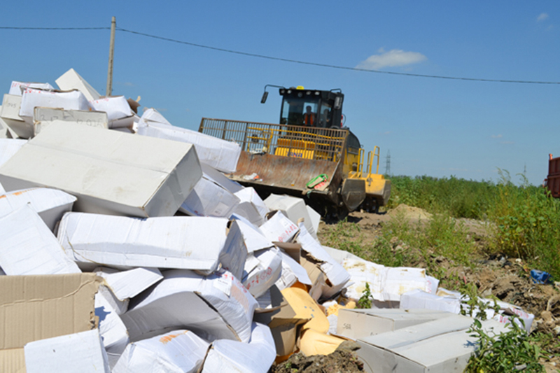 Фото:пресс-служба управления Россельхознадзора по Белгородской области