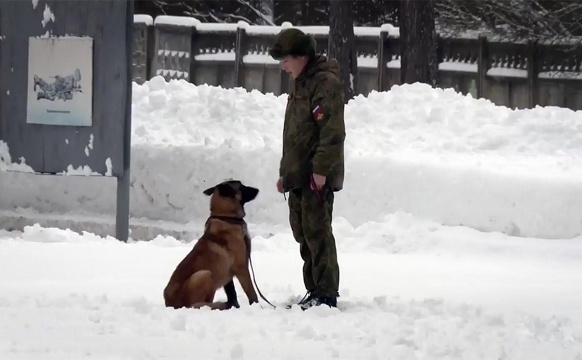Фото: Минобороны России / twitter